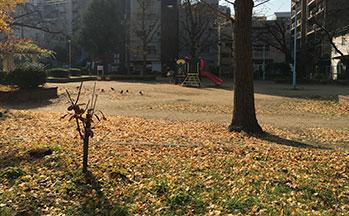 鴎町公園2