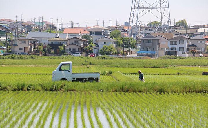 生産緑地の2022年問題とは?日本の地価が暴落する日